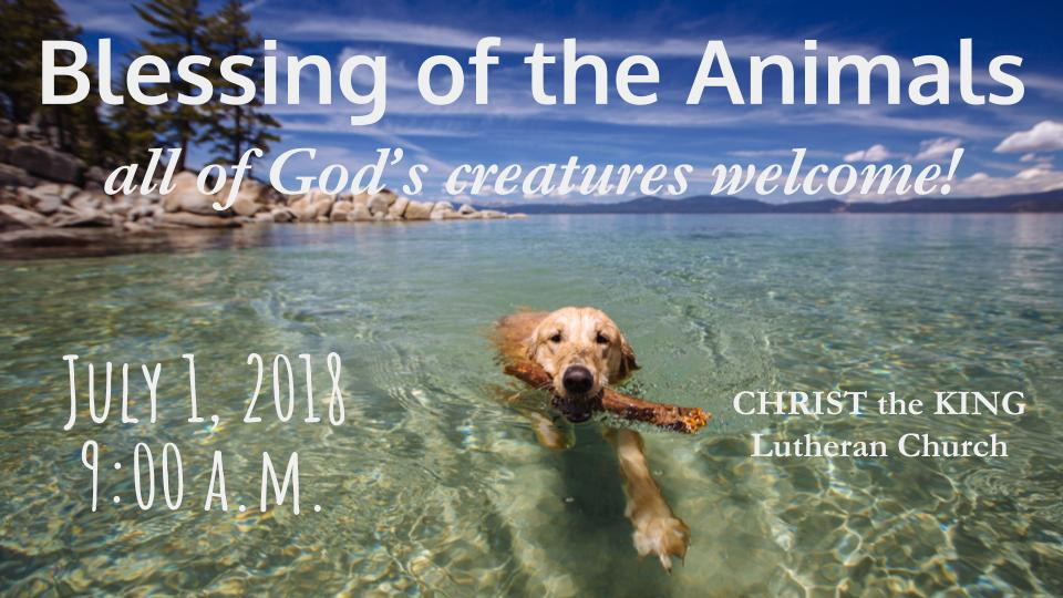 Blessing of the Animals - July 1 at 9:00 a.m.